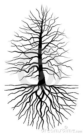 The tree and root