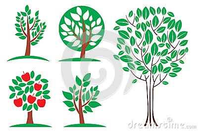 Tree set. Vector