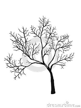 Tree shiluette