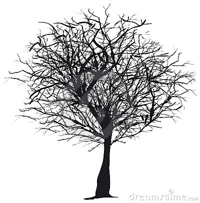 Tree silhouette