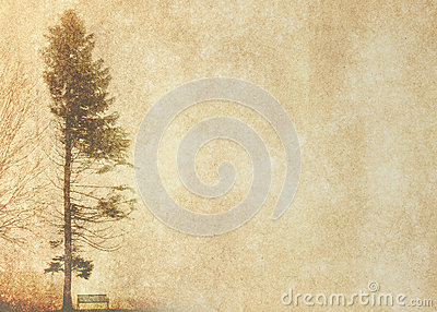 Tree silhouette in winter on vintage background