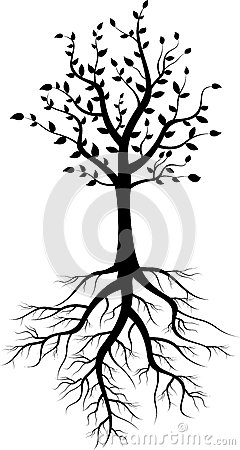 Free Tree Silhouette With Roots Royalty Free Stock Image - 33418266