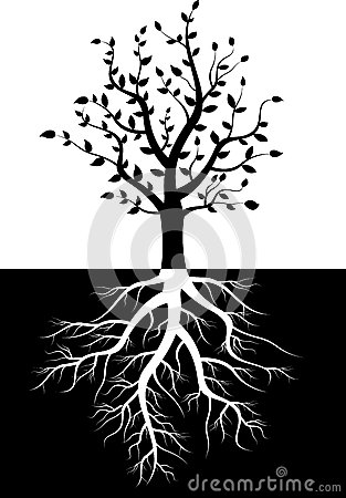 Free Tree Silhouette With Roots Stock Photos - 33418293