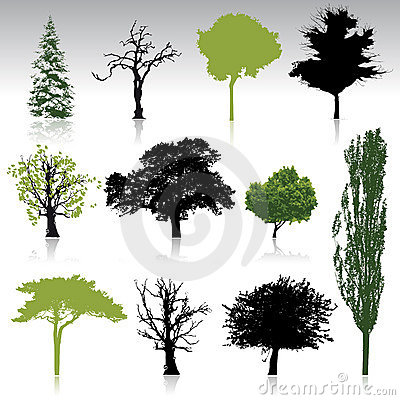 Free Tree Silhouettes Collection For Your Design Royalty Free Stock Photography - 8019917