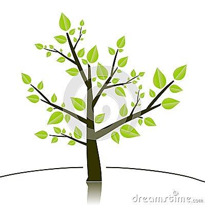 Tree sillhouette