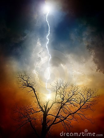 Free Tree Struck By Lightning Stock Photo - 21764900