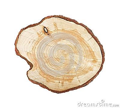 Free Tree Stump Isolated Stock Photos - 18030183