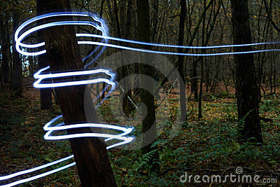 Tree trunk with light spiral