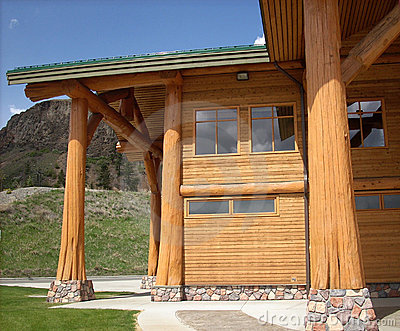 Tree trunk log structure of a modern building