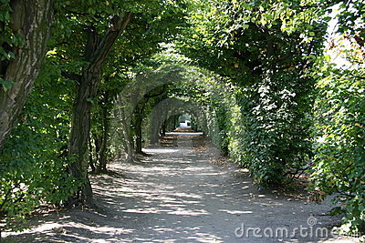 Tree tunnel, Kromeriz