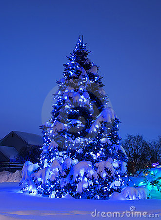 Free Tree With Christmas Lights In Blue Stock Photography - 3885162