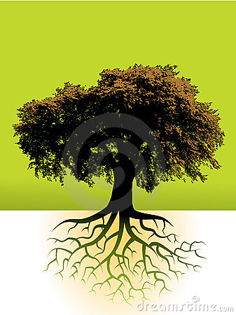 Free Tree With Roots Stock Photos - 6334033