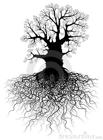 Free Tree With Roots Stock Image - 6769651