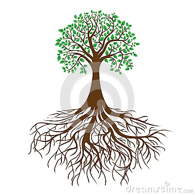 Free Tree With Roots And Dense Foliage, Vector Stock Photos - 24748303