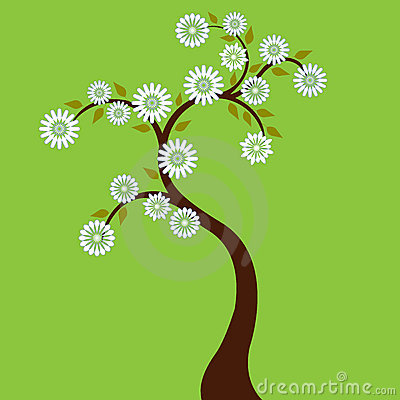 Free Tree With White Flowers Royalty Free Stock Photo - 2293485