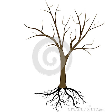 Free Tree Without Leaves Royalty Free Stock Images - 32933309