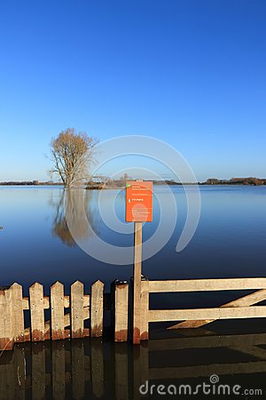 Tree and wooden gate in the flooded river ijssel