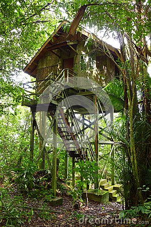Treehouse wooden, eco tourism resort
