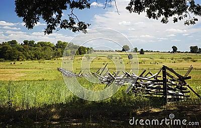 Treeline to Fields Gettysburg Battlefield Pennsylvania