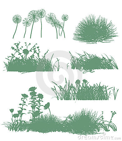Free Trees And Grass Silhouettes Royalty Free Stock Images - 13910049