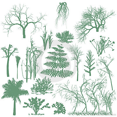 Free Trees And Grass Silhouettes Royalty Free Stock Image - 13910076