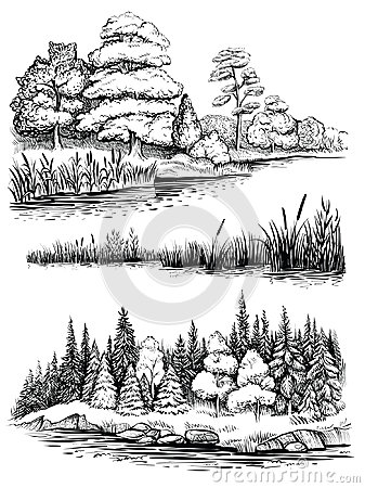 Free Trees And Water Reflection, Vector Illustration Set. Landscape With Forest, Hand Drawn Sketch. Royalty Free Stock Image - 95906976