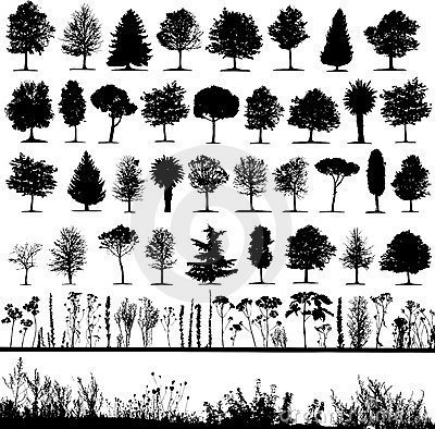 Trees, grass, plant vector Vector Illustration