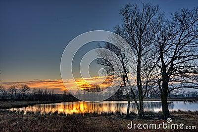 Trees and lake at sunrise
