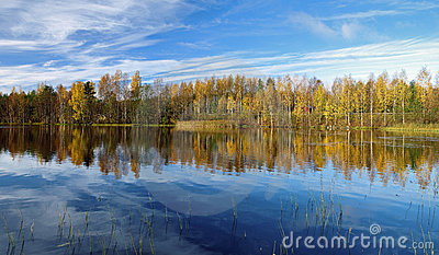 Trees reflecting in the water at autumn morning