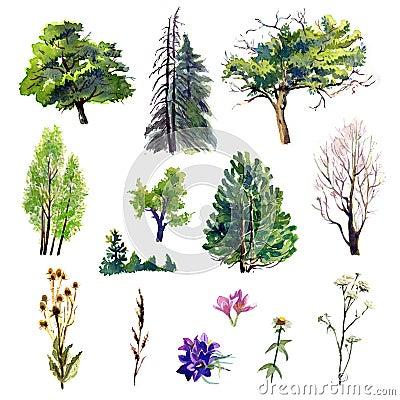 Free Trees Set Stock Photo - 60633020