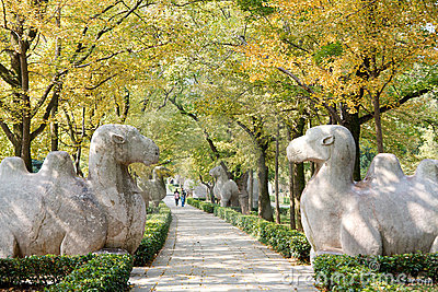 Trees on the sidewalk with stone animal statue