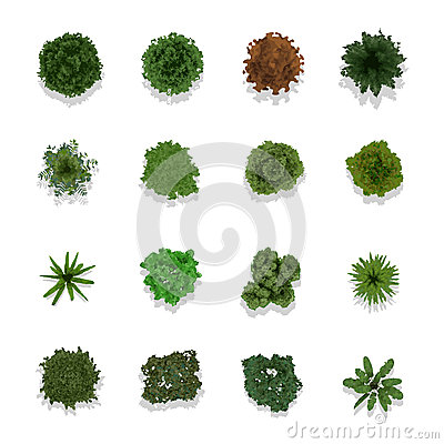 Free Trees Top View For Landscape Stock Image - 31009941
