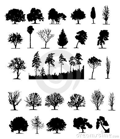 Free Trees (vector) Stock Image - 1807051