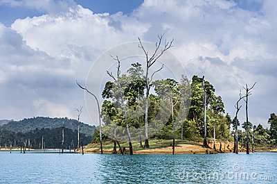 Trees in the water - Cheow Lan Lake, Thailand