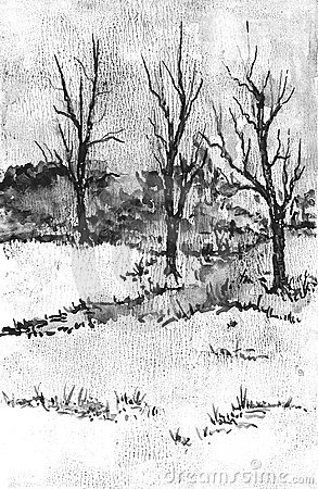 Trees in winter drawing.