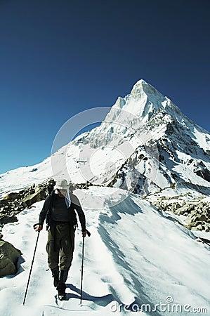 Trek in Himalayan