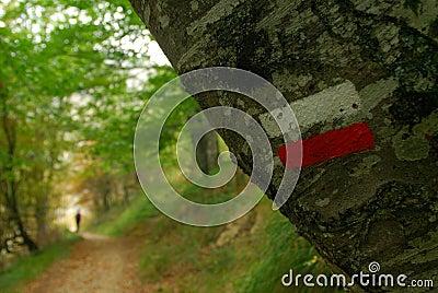 Trekking marks