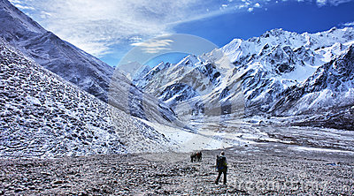 Trekking in Nepal, Langtang valley