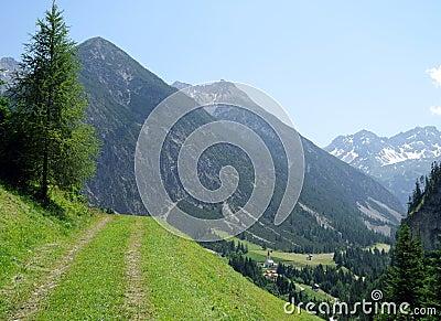 Trekking path in the alps