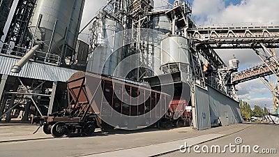 Trem de mercadorias com as colheitas agrícolas como os transportes da carga que movem-se no mar próximo terminal da grão grande D vídeos de arquivo