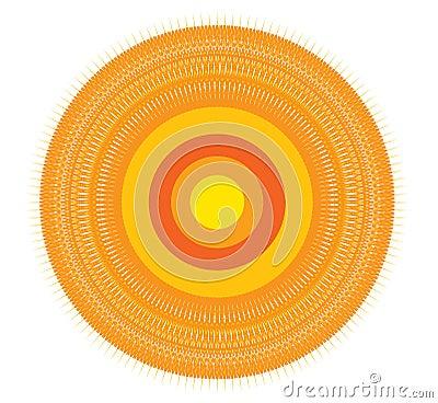 Trendy circle