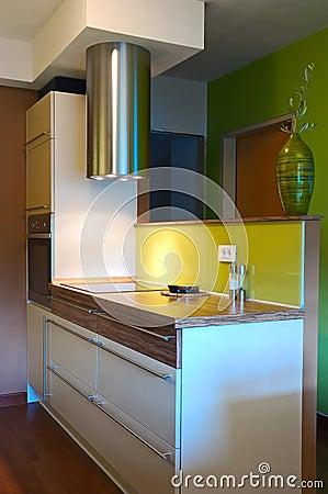 Trendy kitchen interiror