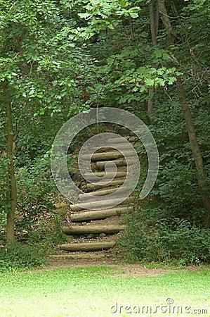 Treppen im Holz