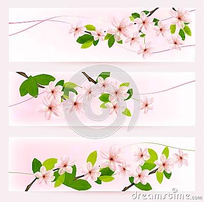 Tres banderas de la primavera con brunch floreciente del árbol