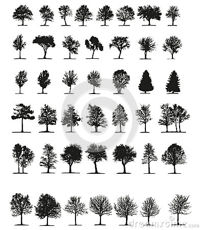 Tress Silhouette Vector