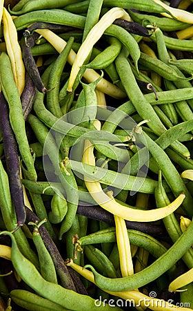 Tri Color Beans