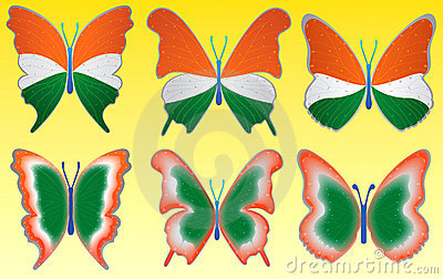 Tri color butterfly on yellow background