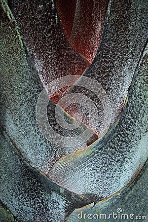 Free Triangle Palm Stock Image - 34511