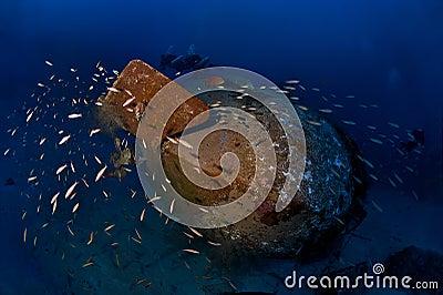 Trimix divers explore deep wreck Colona IV on 65 m