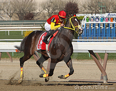 Trinniberg Wins The Bay Shore Stakes Editorial Image